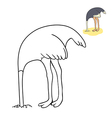 funny ostrich vector image vector image