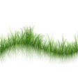grass with reflection on water vector image vector image
