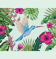 hummingbird with tropical flower and plants vector image vector image