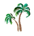 palms watercolor painting on white background vector image vector image