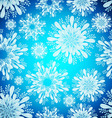 Seamless Patterns with snowflakes vector image vector image