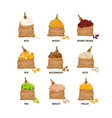 set of grain crops in bag cereals natural vector image