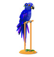 beautiful bird blue parrot sitting on a wooden vector image vector image