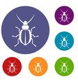 beetle icons set vector image vector image