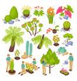 botanical garden constructor set vector image vector image