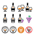 brandy and cognac color icons set - alcohol vector image vector image