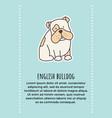 bulldog banner 1 vector image