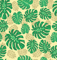 exotic seamless pattern with monstera leaves vector image vector image