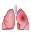 pneumonia disease lungs icon realistic style vector image vector image