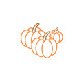 pumpkin graphic design template isolated vector image