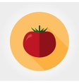 Tomato icon Flat vector image vector image