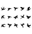 simple birds flying Silhouettes vector image