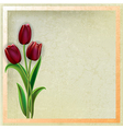 abstract beige grunge background with red tulips vector image vector image