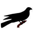 falcon silhouette vector image vector image