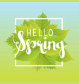 hello spring lettering with hand drawn letters vector image