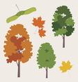 maple tree vector image vector image