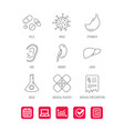 pills medical plaster and prescription icons vector image vector image