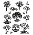 set of decorative trees vector image