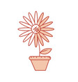 silhouette beautiful sunflower in the flowerpot vector image vector image