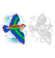 fantasy fairyland flying bird colorful vector image