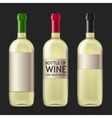 Sample of empty bottles for wine vector image vector image