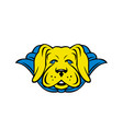 super yellow lab dog wearing blue cape vector image vector image