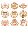 vintage bakery labels with wheat ears and vector image vector image