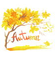 watercolor autumn vector image