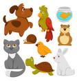 cartoon pets domestic animals flat icons vector image