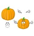 Cartoon happy orange pumpkin vegetable vector image