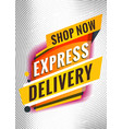 express delivery promotional concept template vector image