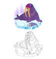 fantasy cute fairyland walrus sitting vector image