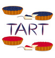 icon logo for whole berry cake tart vector image
