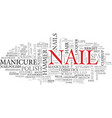 nail word cloud concept vector image vector image