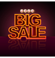 Neon sign big sale open vector image