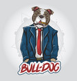 pit bull dog top model artwork vector image vector image