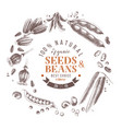 seeds and beans wreath composition vector image vector image