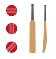 Traditional wood cricket bats and balls vector image