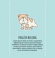 bulldog banner vector image