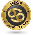 Cancer zodiac gold sign cancer symbol vector image