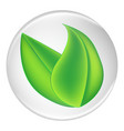 green plant leaves on a white round shield vector image