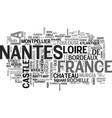 nantes word cloud concept vector image vector image