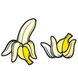 peeled banana and banana vector image