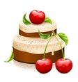 Sweet cake with ripe cherries vector image vector image