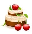 Sweet cake with ripe cherries vector image