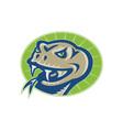 Viper Snake Serpent Mascot Head vector image vector image