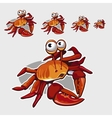 Funny red crab with big eyes icon for your design vector image