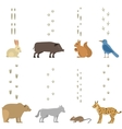 Animals steps set vector image