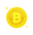 Bitcoin cryptocurrency digital money block chain vector image