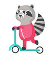 cutr raccoon on a kick scooter icon isolated vector image vector image